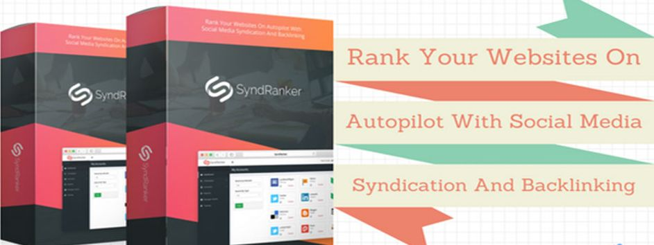 SyndRanker Review-