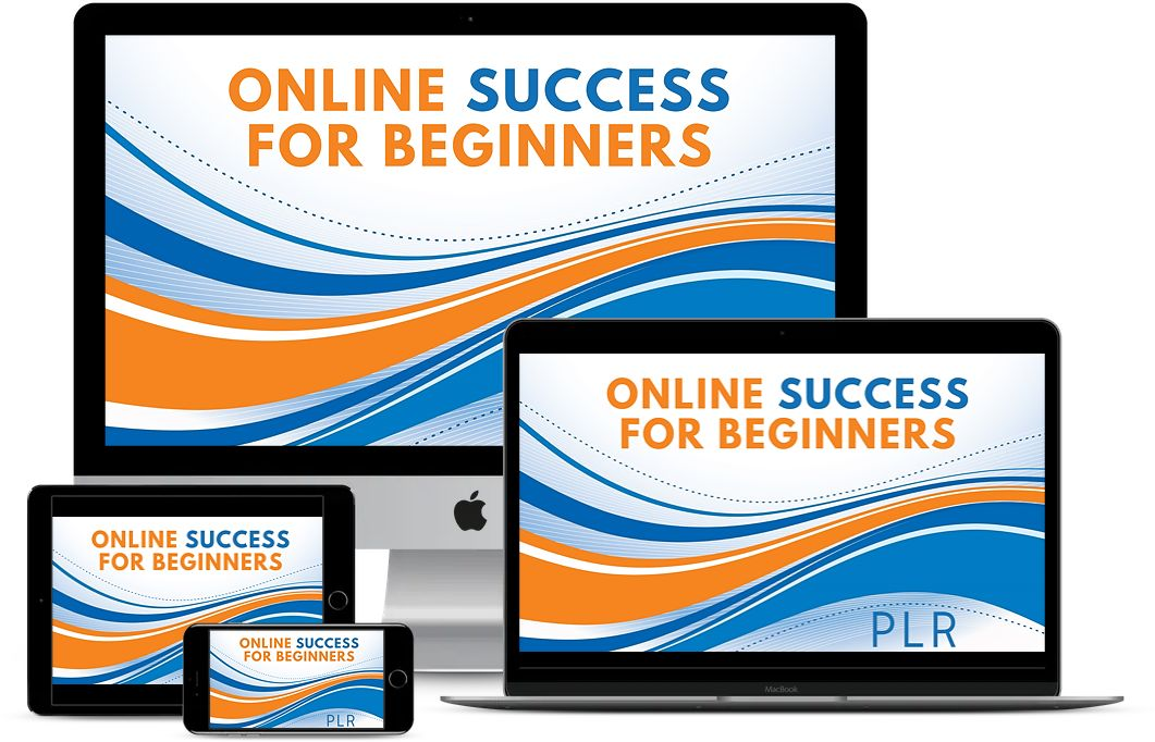 Online Success for Beginners PLR Review